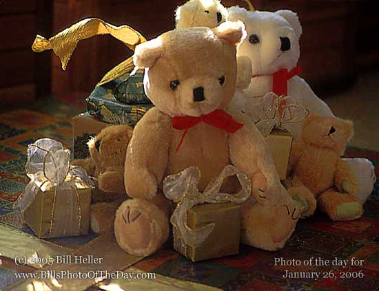 Bears waiting for christmas morning