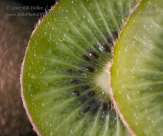 Slices of Kiwi fruit [<em>Actinidia deliciosa</em>] leaning against a whole fruit.