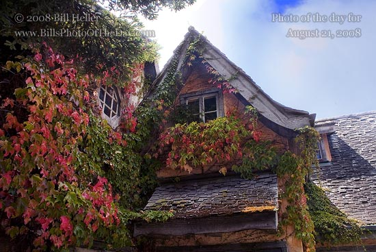 Vine covered building in Carmel-by-the-Sea