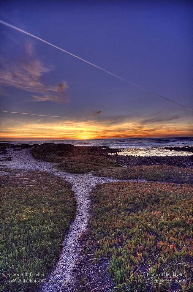 Sunset along the beach in Pacific Grove