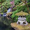 Tuesday, June 19, 2018 - Portland Japanese Garden